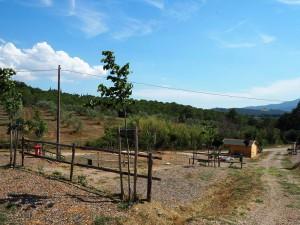 Agricampeggio in Toscana Podere Santa Clorinda